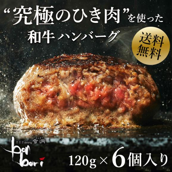 【送料無料(本州)】お試しセット 究極のひき肉で作る 濃厚 牛100% ハンバーグステーキ 120g×6個入り (プレーン120g)01
