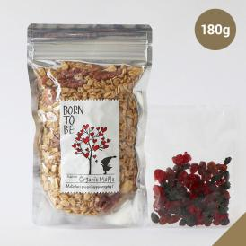 Organic Maple 180g オーガニック グラノーラ 糖質オフ グルテンフリー ノンシュガー