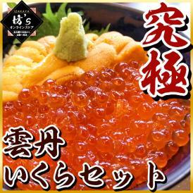 うに いくら 丼 セット 雲丹 ウニ ギフト 刺身 無添加ウニ 海鮮 誕生日 お祝い プレゼント 送料無料 北海道産