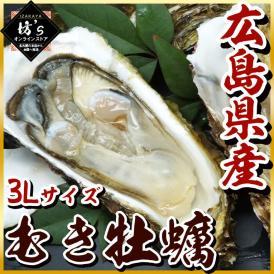 牡蠣 大粒 3L 広島県産 超特大 かき カキ 鍋 焼き牡蠣 貝 海鮮 希少 大粒 むき身 オメガ3 送料無料 贈物 プレゼント