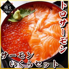 いくら トロサーモン セット イクラ醤油漬 + とろサーモン どんぶり 海鮮 詰め合わせ 鮭 魚卵 サーモン 大容量 鱒卵