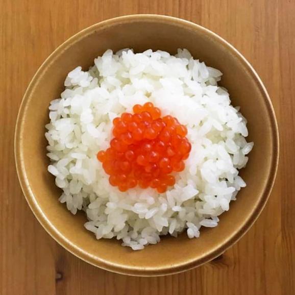 いくら 醤油漬 イクラ 北海道産 最高級品 極上 500g 化粧箱入り 鮭いくら 海鮮 魚卵 贈物 プレゼント 送料無料03