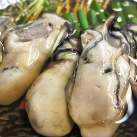 牡蠣 大粒 3L 広島県産 超特大 かき カキ 鍋 焼き牡蠣 貝 海鮮 希少 大粒 むき身 オメガ3 送料無料 贈物 プレゼント03