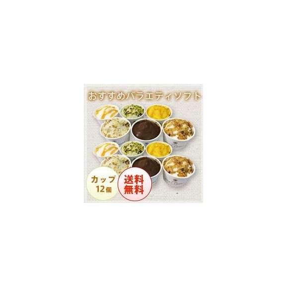 おすすめバラエティソフト カップ12個セット【砂糖不使用のおいしいハンドメイド(手作り)のジェラート】01