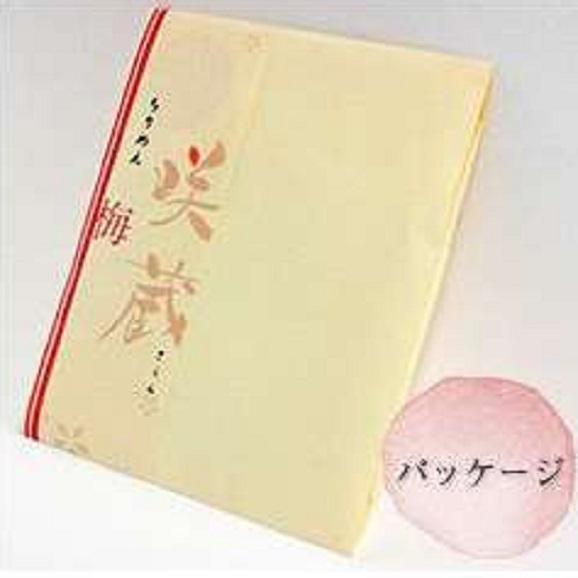 梅ちりめん02