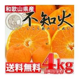 ≪送料無料≫ デコポンと同品種のさっぱりジューシーみかん♪ 【和歌山県産 不知火(しらぬい) 4kg (10~16玉)】 みかん ミカン 蜜柑 柑橘 オレンジ