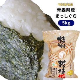 【青森県産特別栽培米 まっしぐら5kg】農薬・化学肥料を5割以下に減らした特別栽培米!一粒一粒が主張して、しっかりもっちりとした食感と甘さ♪[※SP]