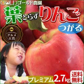 りんご の常識を変える★葉とらず栽培 本場青森ゴールド農園 送料無料 【葉とらずりんご つがる2.7kg プレミアム】 葉とらず りんご 青森りんご リンゴ [※産地直送のため同梱不可]「GOLD」