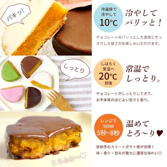 【ギフトや内祝】安納芋トリュフチョコレート【10個入】・送料無料・込05