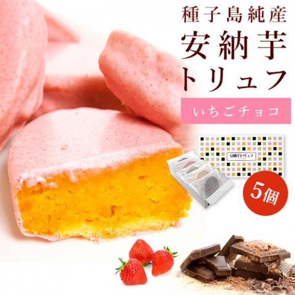 安納芋トリュフ苺チョコレート【5個入】【ギフトや内祝いに】01
