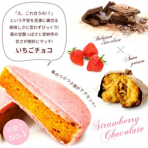 安納芋トリュフ苺チョコレート【5個入】【ギフトや内祝いに】02