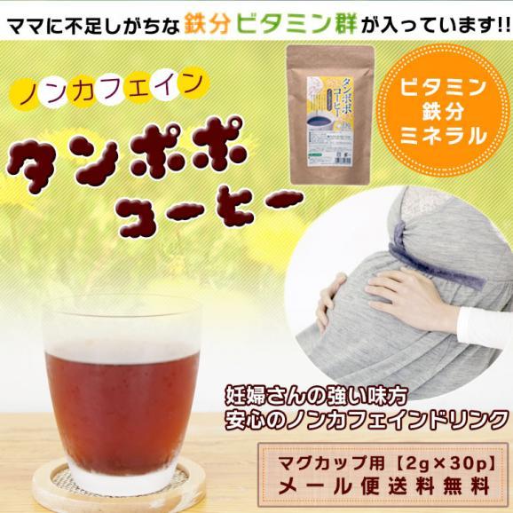 たんぽぽ茶 タンポポコーヒー マグカップ用 ティーバッグ 2g 30包 ノンカフェイン たんぽぽ茶 妊活 送料無料01