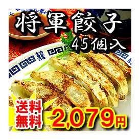 職人 欒 徳茂が40年以上懸けて作り上げた将軍餃子(45個) 【送料無料】【お得な中華】