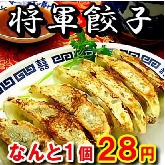 【15週連続1位】将軍餃子の最安値セール1個28円※必ず20個単位でお買い求め下さい!