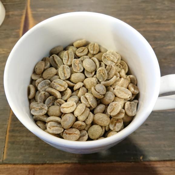 メール便 送料無料 ブラジル インペリアルトパーズ シャローン エステート 150g レギュラーコーヒー コーヒー コーヒー豆02