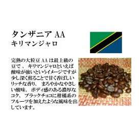 メール便 送料無料 タンザニアAA(キリマンジャロ) 150g レギュラーコーヒー コーヒー コーヒー豆