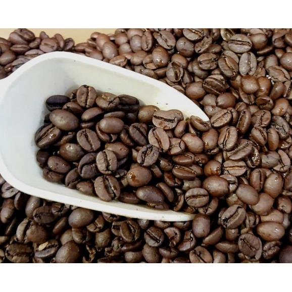 メール便 送料無料 ブラジル インペリアルトパーズ シャローン エステート 300g レギュラーコーヒー コーヒー コーヒー豆03