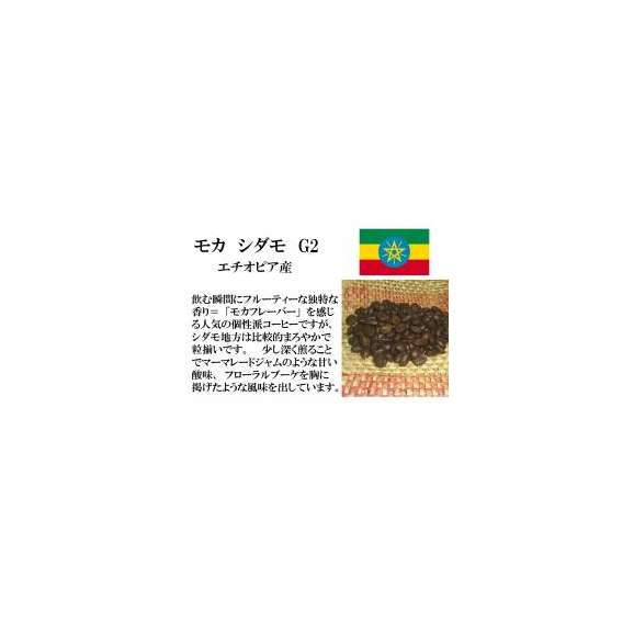 メール便 送料無料 モカ シダモ 300g レギュラーコーヒー コーヒー コーヒー豆 エチオピア産01