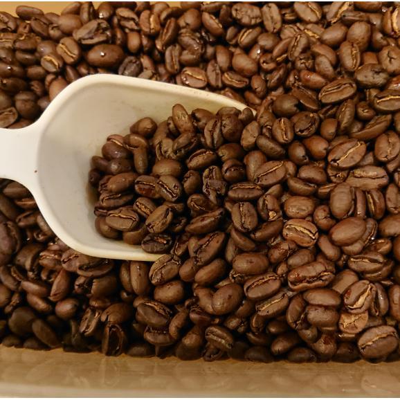 メール便 送料無料 モカ シダモ 300g レギュラーコーヒー コーヒー コーヒー豆 エチオピア産02