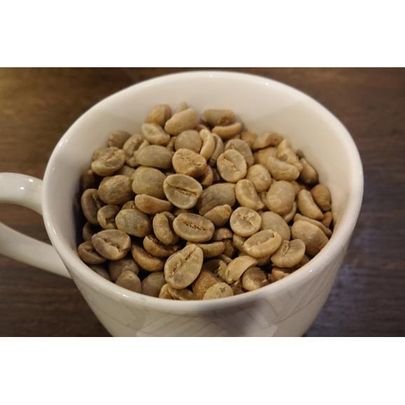 メール便 送料無料 タンザニアAA(キリマンジャロ) 300g レギュラーコーヒー コーヒー コーヒー豆02