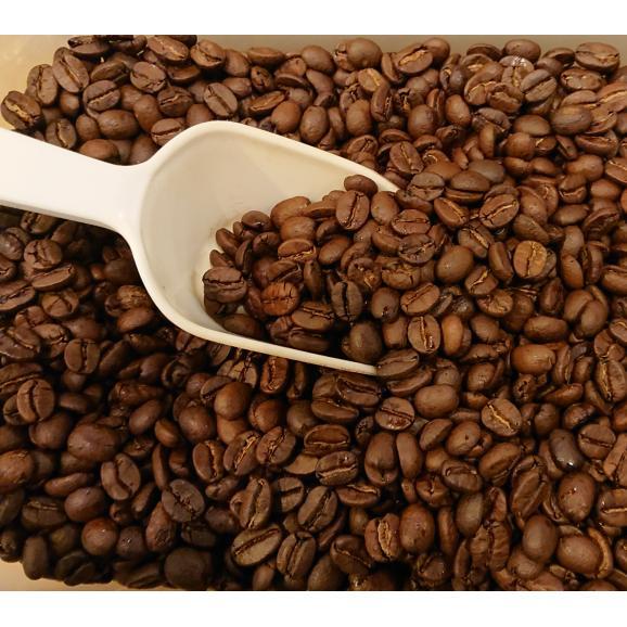 メール便 送料無料 タンザニアAA(キリマンジャロ) 300g レギュラーコーヒー コーヒー コーヒー豆03
