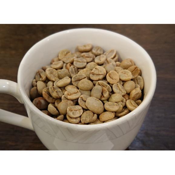メール便 送料無料 ブラジル サントス NO,2 300g レギュラーコーヒー コーヒー コーヒー豆02