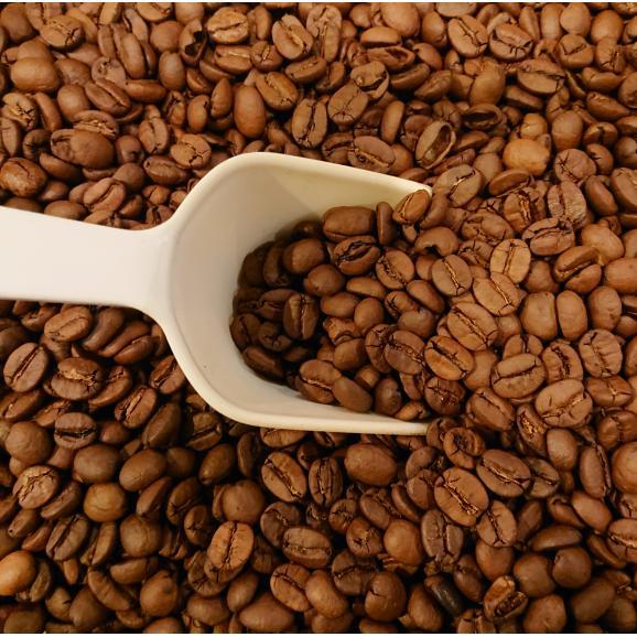 メール便 送料無料 ブラジル サントス NO,2 300g レギュラーコーヒー コーヒー コーヒー豆03