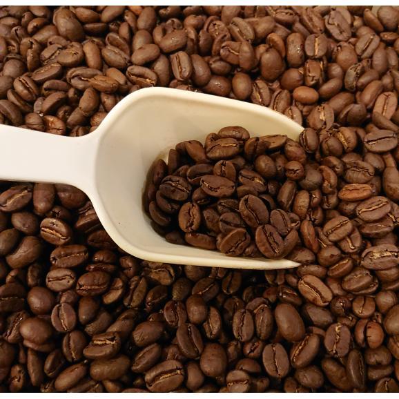 メール便 送料無料 コロンビア エクセルソ300g レギュラーコーヒー コーヒー コーヒー豆03