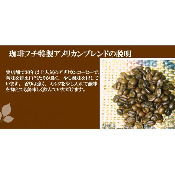 メール便 送料無料 珈琲フチ特製アメリカンブレンド300g レギュラーコーヒー コーヒー コーヒー豆 ブレンド02