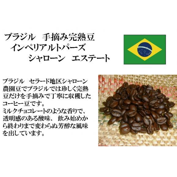 比較テイスティングセット ストレートコーヒー&ブレンドコーヒー ブラジルインペリアル トパーズ シャローン エステート 珈琲フチ特製ブレンド 150g+150g/レギュラーコーヒー/コーヒー/コーヒー02