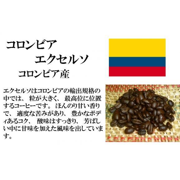 比較テイスティングセット ストレートコーヒー& ストレートコーヒー ブラジルサントスNO.2 コロンビア エクセルソ 150g+150g レギュラーコーヒー コーヒー コーヒー豆 送料無料03