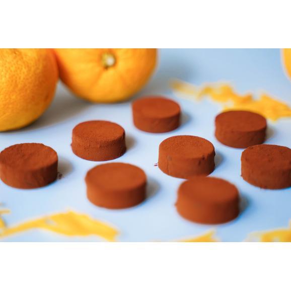 柚子生チョコレート02