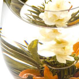 ~初めての方にも花咲くお茶~3個+アリエルポット付きギフト