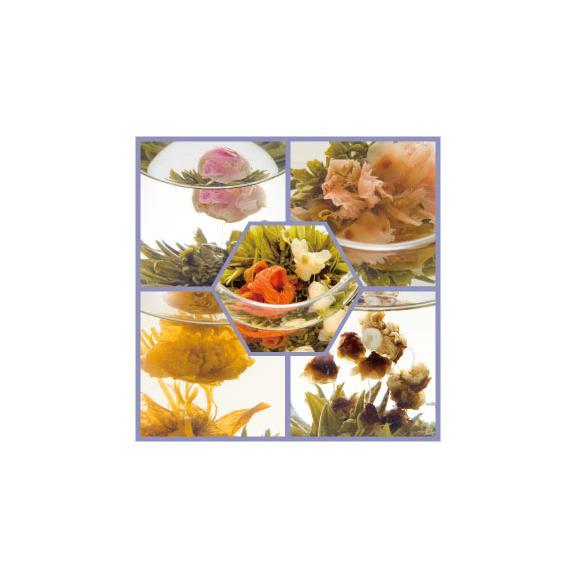~花咲くお茶~康藝銘茶アソート缶-Premium-[黄山毛峰・特級茶葉使用]02