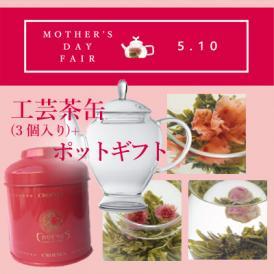 [2020母の日カーネーションの工芸茶] スカーレット缶+アリエルポットギフト(化粧箱入り)