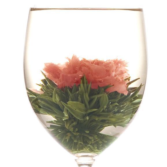 母の日にカーネーションのお花が咲くお茶(マザーオブラブ) スカーレット缶 Mother03
