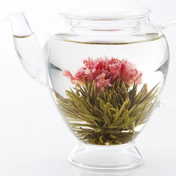 母の日にカーネーションのお花が咲くお茶(マザーオブラブ) スカーレット缶 Mother04