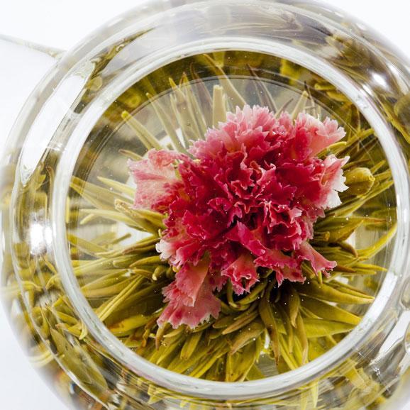 母の日にカーネーションのお花が咲くお茶(マザーオブラブ) スカーレット缶 Mother05