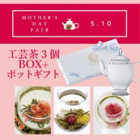 送料無料![早期ご予約受付中!][2020母の日カーネーションの工芸茶] 工芸茶3個箱+アリエルポットギフト(化粧箱入り)