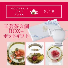 送料無料![2020母の日カーネーションの工芸茶] 工芸茶3個箱+アリエルポットギフト(化粧箱入り)