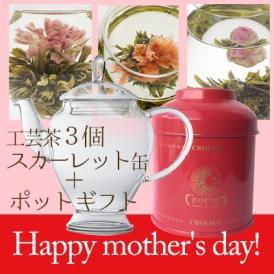 【プレゼント特典付き!】 [2021母の日カーネーションの工芸茶] スカーレット缶+アリエルポットギフト(化粧箱入り)