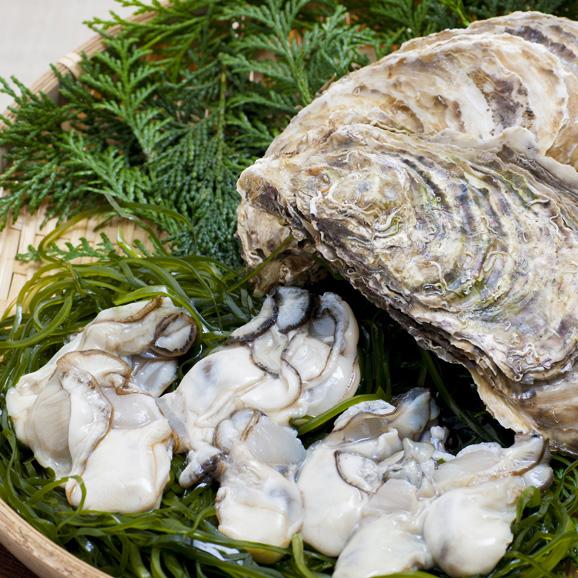 【1日限定20セット】限定商品 伝統の約束 牡蠣キムチ 400g(200g×2パック)03
