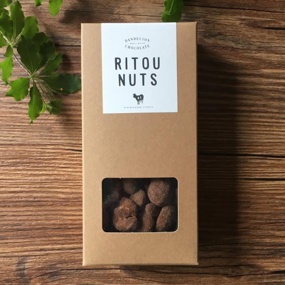 ダンデライオン・チョコレート RITOU NUTS01