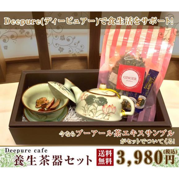 養生茶器セット01