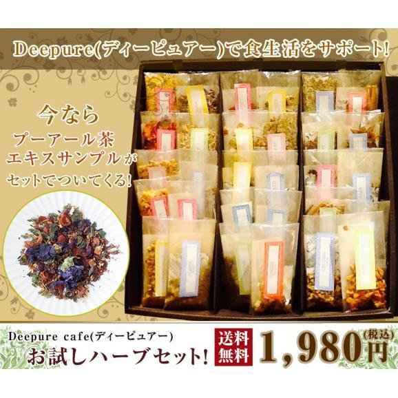 Deepure(ディーピュアー)お試しハーブセット!01