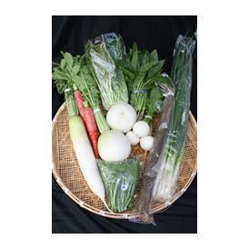 旬の京野菜 詰め合わせセット