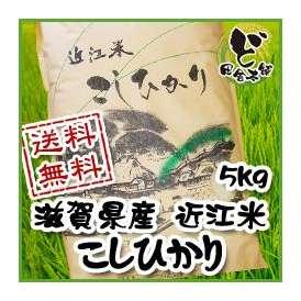 【送料無料】 28年 滋賀県産 近江米 こしひかり 5kg