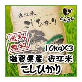 【送料無料】 28年 滋賀県産 近江米 こしひかり 10kg×3