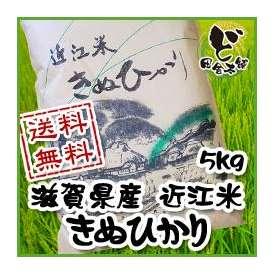 【送料無料】 28年 滋賀県産 近江米 きぬひかり 5kg