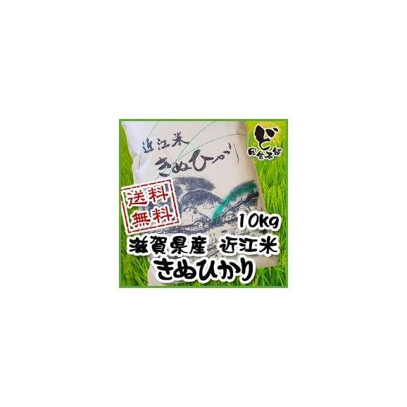 【送料無料】 28年 滋賀県産 近江米 きぬひかり 10kg01